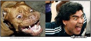 Maradona pode latir a vontade, quem é rei nunca perde a majestade